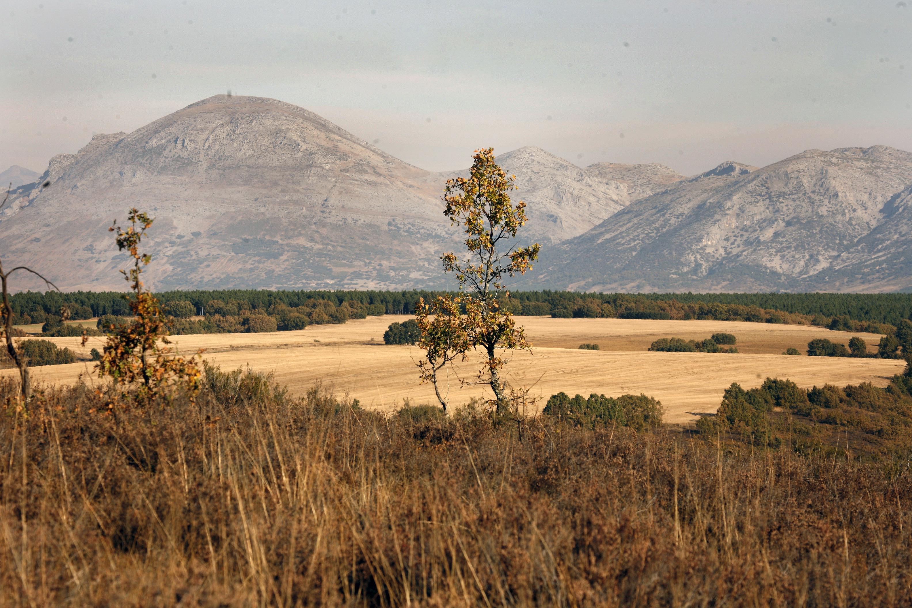 Bascones O.paisaje (3)